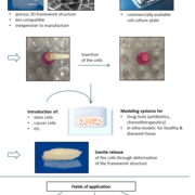 Use of the ingenious 3D cell culture system (top) and possible applications (below) [Sources: KIT, fotolia.de].